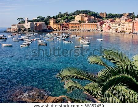 Tigullio Gulf with Sestri Levante, Italy Stock photo © Antonio-S
