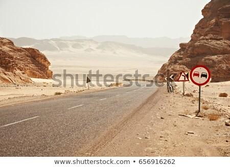 Egypte wegteken groene wolk straat teken Stockfoto © kbuntu
