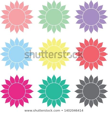 Kleurrijk abstract iconen geïsoleerd Stockfoto © cidepix