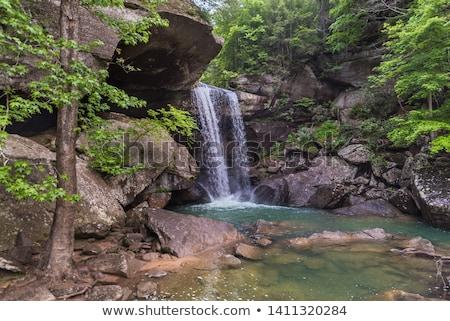 schilderachtig · zuidelijk · Kentucky · voorjaar · water - stockfoto © benkrut