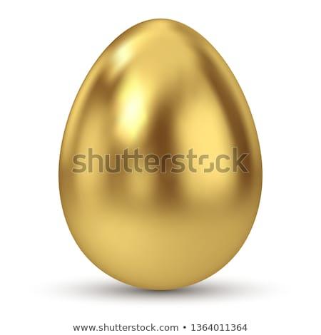 golden egg stock photo © devon