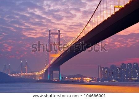 Hong Kong Bridge And Downtown At Sunset Foto d'archivio © cozyta