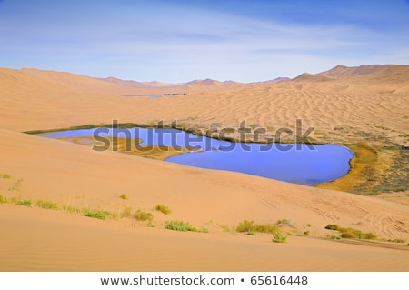 Desert lake - water colorful scenery nature wilderness sand  dun Stock photo © jeremywhat