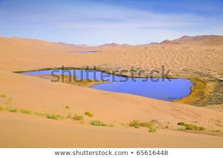 desert lake   water colorful scenery nature wilderness sand dun stock photo © jeremywhat