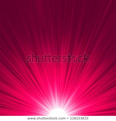 Star burst pink and white fire. EPS 8 Stock photo © beholdereye