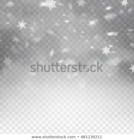 Vector vallen sneeuw christmas hemel water Stockfoto © freesoulproduction