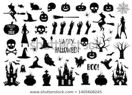 Horreur icônes sombre araignée peur cartoon Photo stock © ildogesto