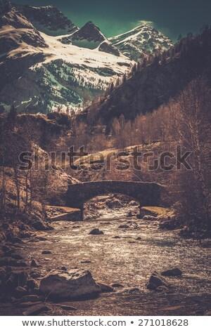 ponte · montagna · foresta · legno · vicino · acqua - foto d'archivio © nejron