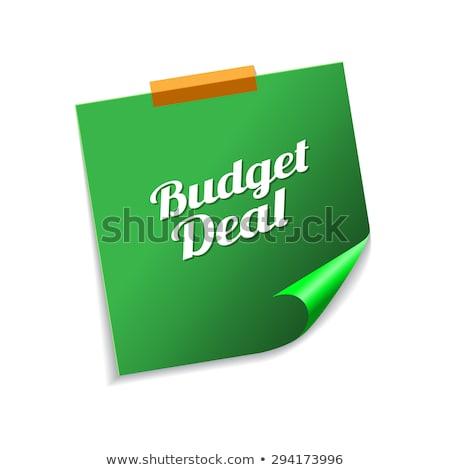 Budget deal groene sticky notes vector icon Stockfoto © rizwanali3d