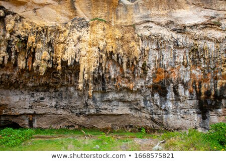 Stalagtite Details in a Cave Stock photo © wildnerdpix