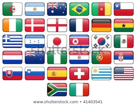 Kare ikon bayrak Nijerya gölge imzalamak Stok fotoğraf © MikhailMishchenko