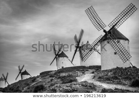 old windmills in Campo de Criptana, Spain, black and white Stock photo © nito