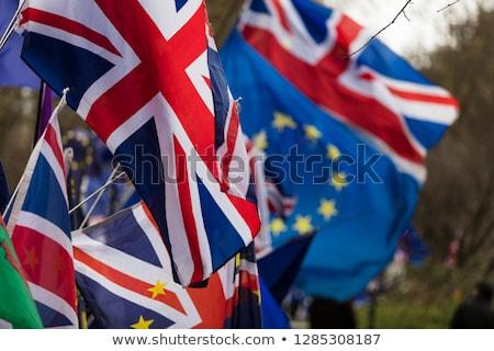 シンボル eu フラグ 金融 ヨーロッパ 国 ストックフォト © SArts