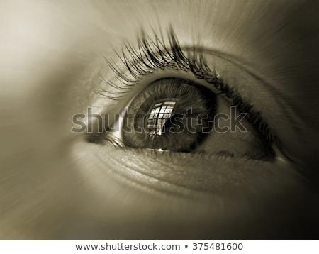 眼 ウィンドウ 反射 クリーン 人間 ストックフォト © borysshevchuk