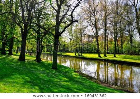 парка старый город регион Бельгия дерево закат Сток-фото © benkrut
