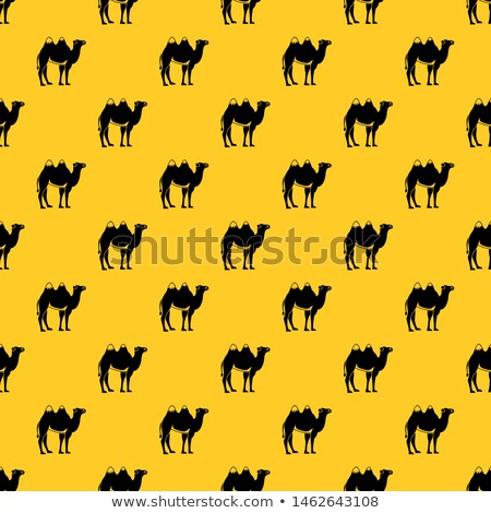 Seamless pattern United Arab Emirates. Desert and camels and pal Stock photo © popaukropa