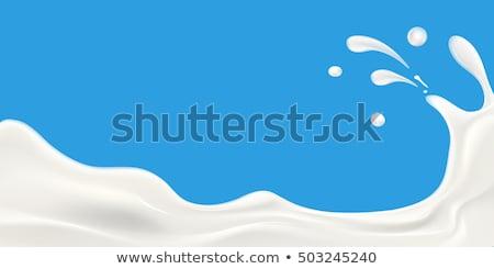 pakket · melk · vector · geïsoleerd · icon · zuivelfabriek - stockfoto © pikepicture