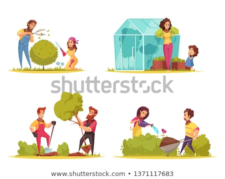 House Plant, Shrubs Growing from Ground Isolated Stock photo © robuart