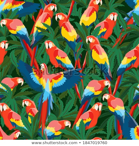 Yellow parrot seamless pattern Stock photo © colematt