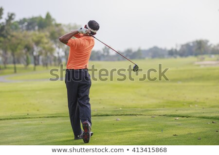Back of Fairway Wood Golf Club on White Background Stock photo © feverpitch