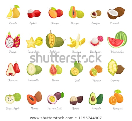 exotique · juteuse · fruits · vecteur · affiche · texte - photo stock © robuart