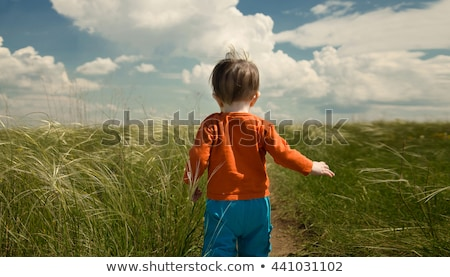 Boy Child Walking on Grass, Summer and Nature Stock photo © robuart
