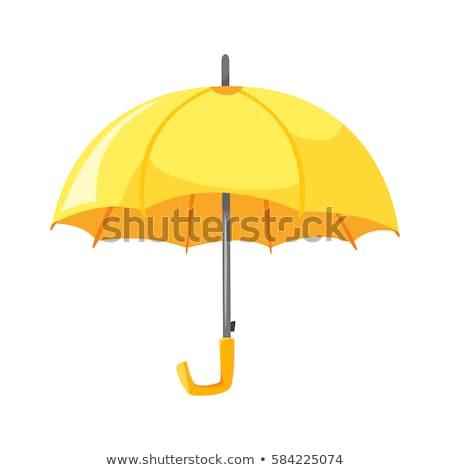 Cartoon Umbrella Foto d'archivio © curiosity