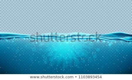 Vector underwater blue ocean background design on transparent background. Summer illustration with d Stock photo © articular