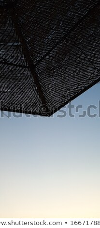 A projection of a straw canopy against a blue sky Stock photo © ElenaBatkova