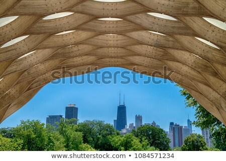 Centro da cidade Chicago ver parque verão Foto stock © benkrut