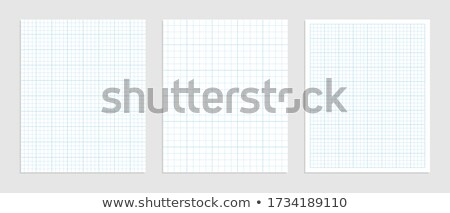Mathematical graph paper set for data representation Stock photo © SArts