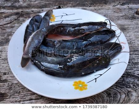 Fresh catfish Stock photo © digitalr