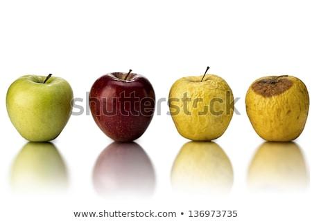 натюрморт желтый гнилой яблоки Bee темно Сток-фото © vavlt