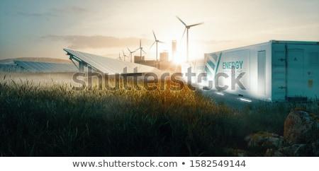 Groene energie batterij natuur licht blad energie Stockfoto © djdarkflower