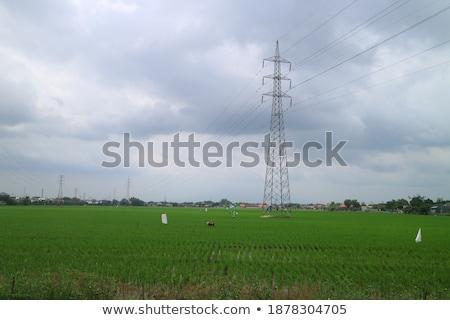 Transformatör istasyon mavi gökyüzü gerilim kule Stok fotoğraf © meinzahn