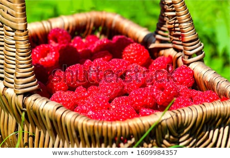 Ripe raspberries  Stock photo © natika