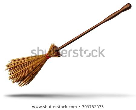 Halloween illustration with witch on broom Stock photo © Elmiko