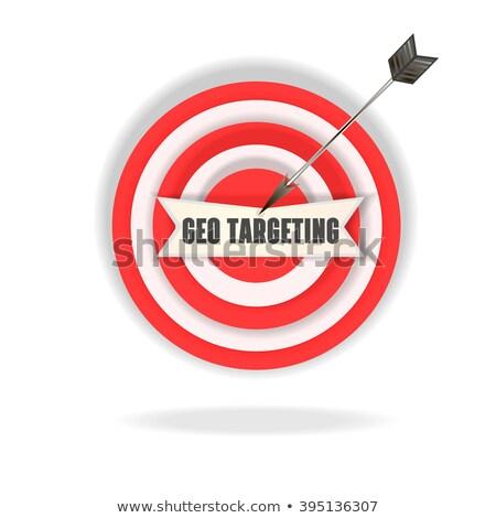 seo   arrows hit in red mark target stock photo © tashatuvango