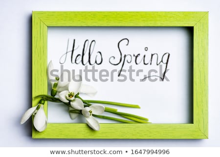 printemps · sensation · mains · âgées · homme · bébé - photo stock © mady70