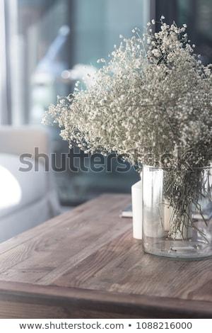 tél · részlet · közelkép · hó · fehér · felület - stock fotó © pressmaster