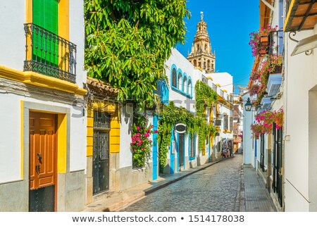 Cordoba in Spain Historic Architecture Stock photo © rognar