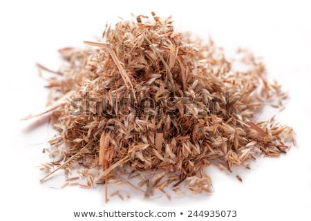 Photo stock: Herbe · semences · ensemble · sécher · médecine