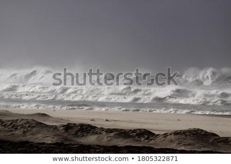 Fırtınalı deniz plaj yüksek dalgalar doğa Stok fotoğraf © Arrxxx
