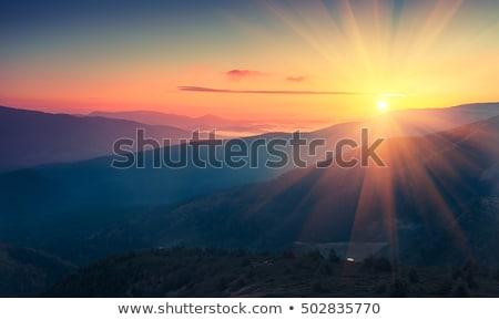 fenséges · színes · erdő · fák · napos · hegy - stock fotó © kotenko