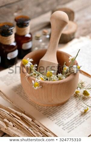 Old wooden mortar Stock photo © frescomovie