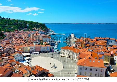 Panorama cidade Eslovenia vermelho telhados Foto stock © Kayco