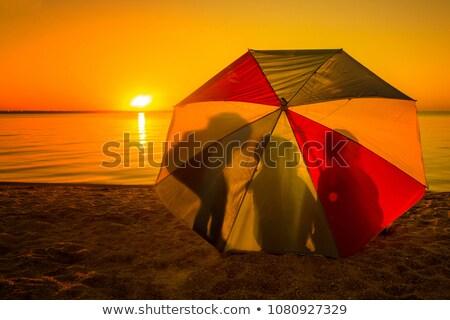 beach under umbrella Stock photo © dnsphotography