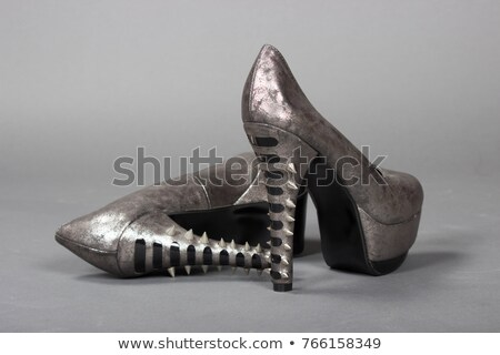High Pointy Heel Shoes Stock photo © cidepix