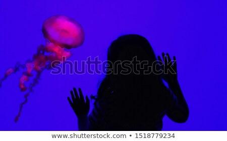esküvő · természet · pár · háttér · óceán · kék - stock fotó © adrenalina