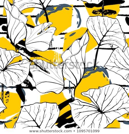 Geométrico contraste línea flor resumen colorido Foto stock © ESSL